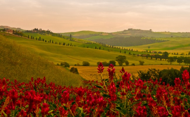 Treasures of Tuscany – Sept. 2014