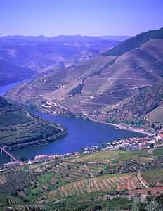 Portugal- duoro river